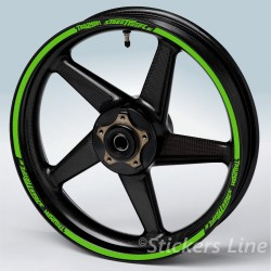 adesivi ruote TRIUMPH SPEED TRIPLE strisce cerchi